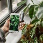 FYTA Beam è un sensore smart che ci comunicherà lo stato di salute della pianta sul nostro smartphone in tempo reale