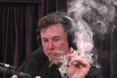 Smart Home Tesla | Elon Musk fuma erba in diretta e parla della sua idea di casa intelligente