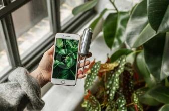 FYTA Beam | Dai voce alle tue piante