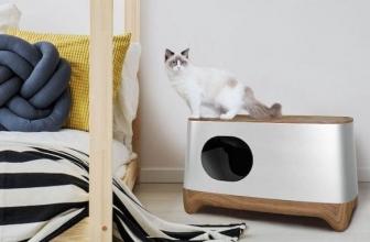 Lettiera smart iKuddle: l'AI al servizio dei gatti